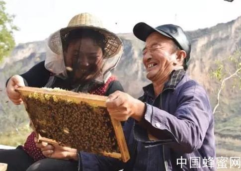 养蜂人菅野桑夫妇