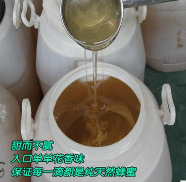 2018年天然蜂蜜大桶装野生农家蜂蜜75公斤装起批各种散装蜂蜜原蜜