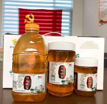 农家土特产野生蜂蜜 瓶装1800g洋槐蜂蜜