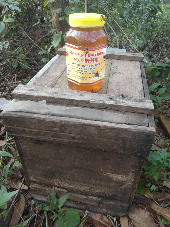 纯天然九龙腾蜂蜜