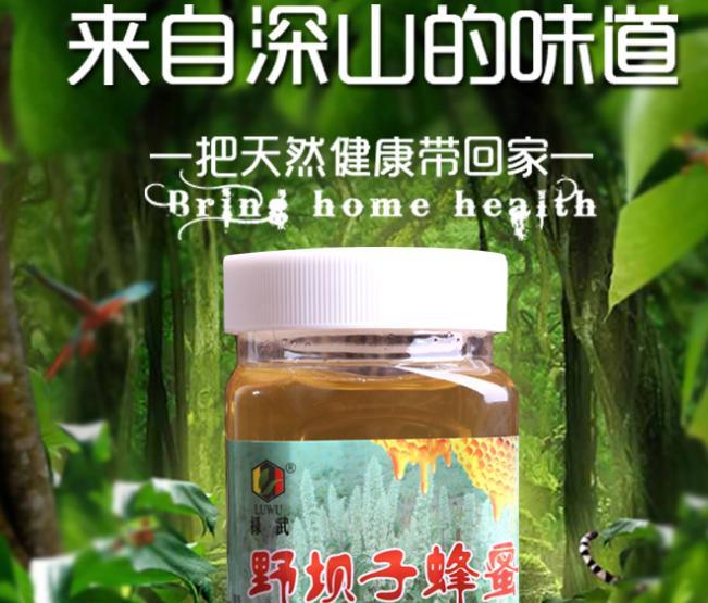 色泽正无杂质野生蜂蜜云南特产新鲜野坝子蜂蜜500g野坝子产家直销