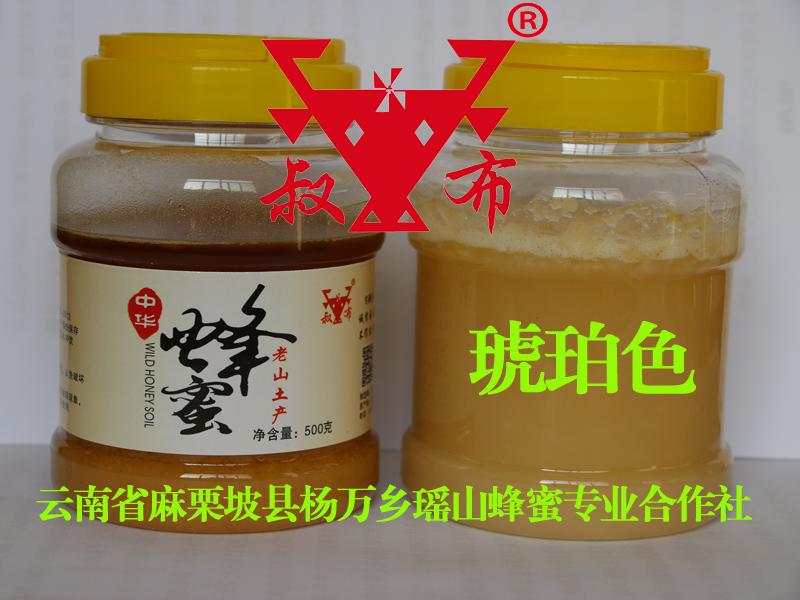 天然成熟中华蜂蜜、土蜂蜜、百花蜜