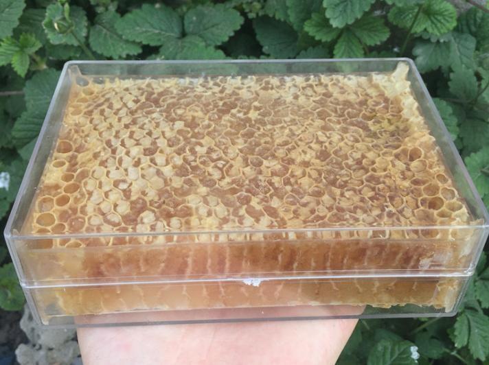 原生态结晶蜂巢蜜 蜂蜜 结晶巢蜜500克老巢蜜 封盖率百分之80左右