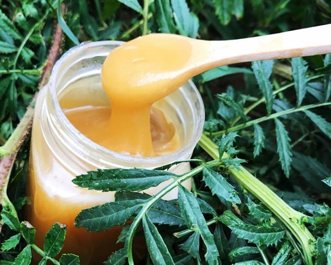 老蜂蜜纯正天然农家自产深山百花蜜土蜂蜜成熟结晶蜂蜜