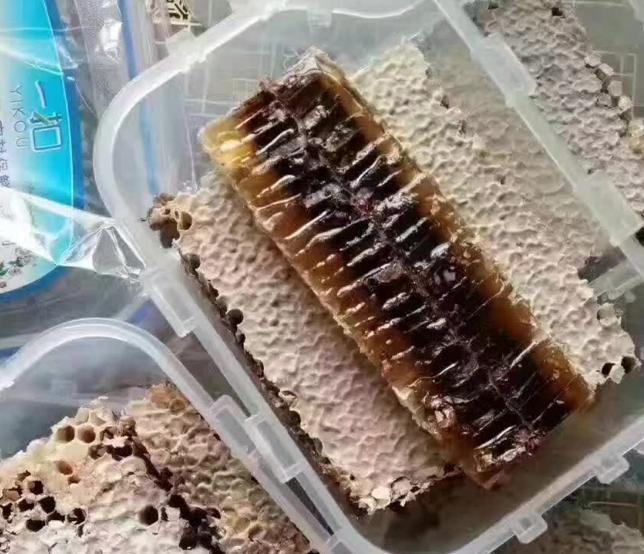 原生态天然深山老蜂巢蜜野生老巢蜜老蜂巢500g蜂砖液体