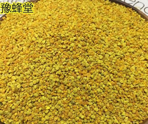 油菜杂粉蜜蜂饲料花粉500g喂蜂专用杂粉打瓜葵花玉米杂粉包邮