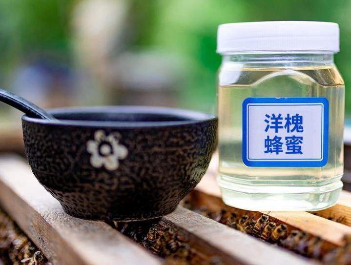 2018年蜂农自产供应成熟蜂蜜 洋槐蜂蜜 批发 一件代发 洋槐花蜂蜜