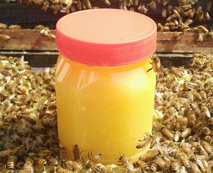 批发土蜂蜜 原蜜批发 天然蜂蜜 500克 蜂蜜百花蜜批发