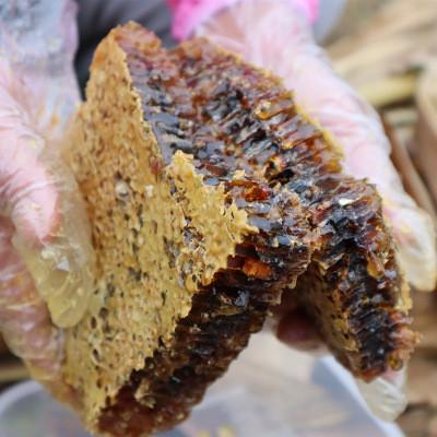 老巢蜜 蜂巢蜜 嚼着吃 深山农家老巢蜜 老脾蜜一件代发