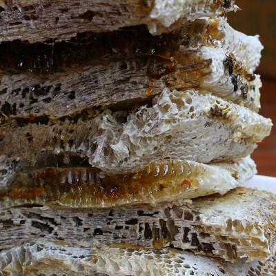 江山碧 土蜂蜜500克 冬蜜 中蜂蜜 蜂场直供 未经加工 甜而不腻