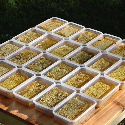 广西蜂巢蜜成熟封盖蜂场直销500g一件代发批发野生山花切割巢蜜