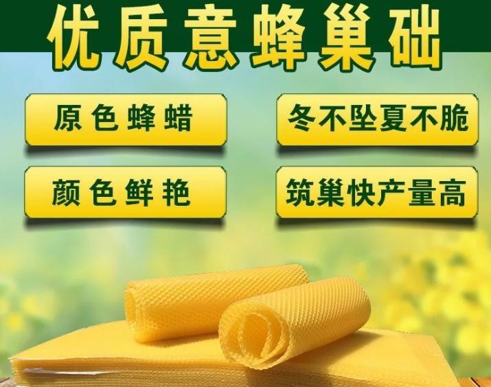 出口型蜂蜡意蜂深房巢础中蜂巢础蜂箱蜂基养蜂专用摇蜜机过滤网