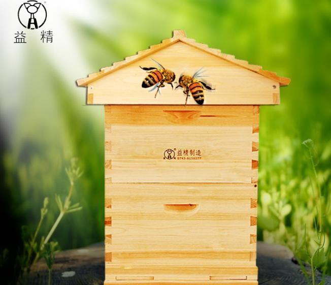 益精蜂箱 尖顶蜂箱 中蜂 意蜂箱 示范基地蜂箱 煮蜡高箱 杉木蜂桶