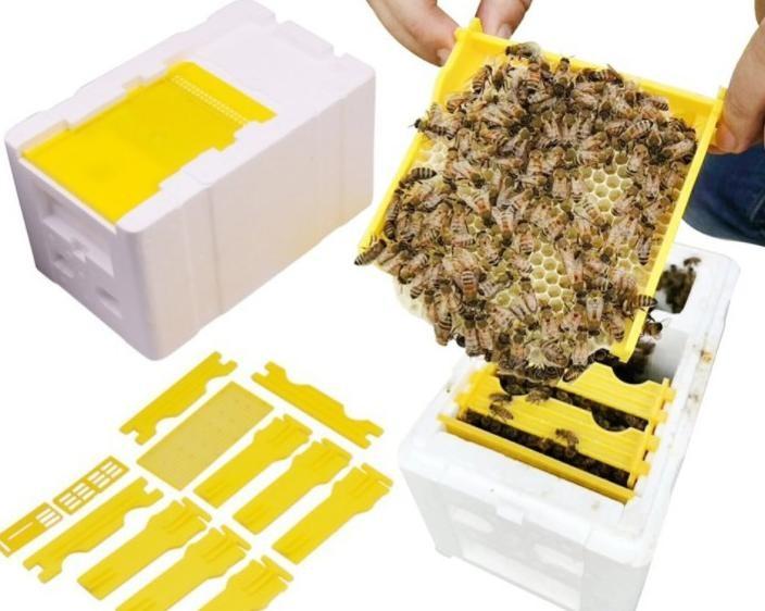 养蜂工具蜜蜂王交尾箱保温式白色泡沫蜂箱高密度储王箱授权蜂箱