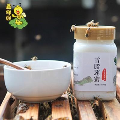 鑫蜂园雪脂莲蜜 蜂蜜500g罐装食品厂家直销