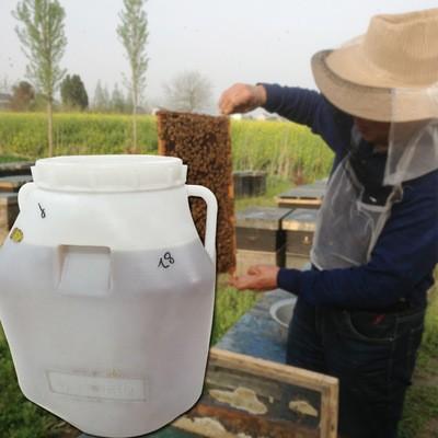 盛锦养蜂多花蜜75kg批发