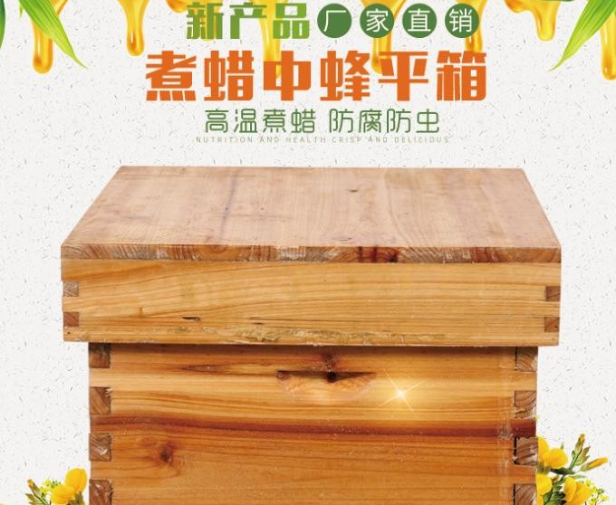 煮蠟中蜂平箱蜂箱,雙層蜂箱包郵 蜂箱批發