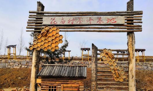 秦岭大山中养土蜜蜂