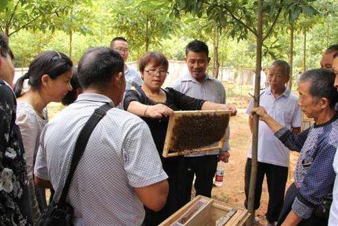 蜂产业慈善扶贫项目