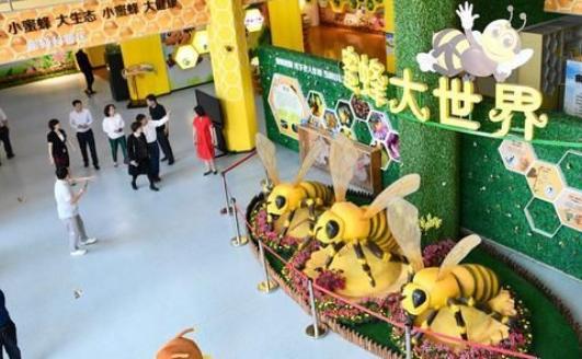 森林蜜蜂小镇