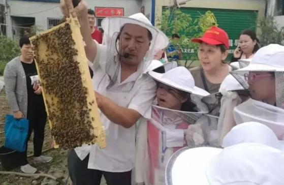 世界蜜蜂日