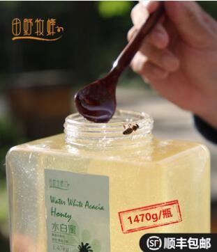 田野牧蜂 洋槐蜂蜜槐花蜜苏先生水白蜂蜜1470g/瓶装
