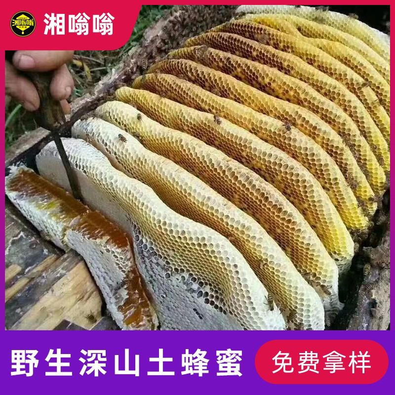湖南郴州蜂蜜批发 湘嗡嗡野生土蜂蜜 中华蜂养殖场直供蜜源 百花蜜批发