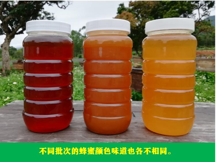 农家野生土蜂蜜