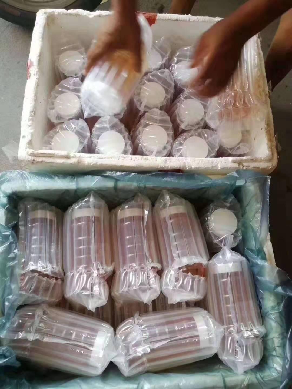 蜂蜜快递包装防震气柱袋快递专用打包泡沫空气袋气泡柱包装袋(支持任何规格定制)